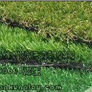 丰都县幼儿园人造草坪图片