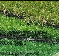 重庆綦江县人造草坪
