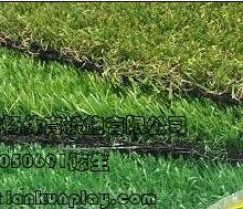 供应重庆潼南哪里有比较便宜的人造草坪,重庆南岸区人造草坪市场价格,重庆幼儿园塑料人造草坪厂家出厂价批发