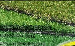 巴南区便宜的人造草坪图片