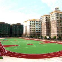 四川專業球場施工,貴州能拓展籃球架廠家價, 重慶潼南硅PU籃球場建造圖片