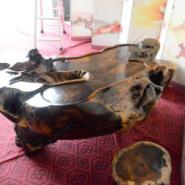 非洲鸡翅木茶海茶桌整体树根茶几图片