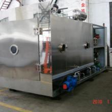 供应青海冬虫夏草冷冻干燥机/虫草干燥机/虫草生产型干燥机