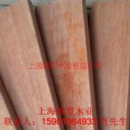 甘肃康巴斯木材烘干图片