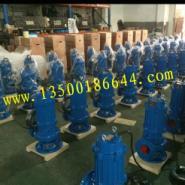 100WQ80-25-11潜水泵图片
