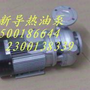 东莞耐高温水泵图片