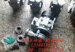 广州元新200度热油泵图片