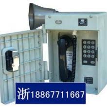 供应HAT86(XII)P/T-F电厂抗噪扩音电话
