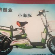 天津电动车批发小海豚电动车14寸图片