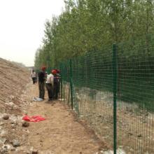 供应低碳钢丝护栏网 优质护栏网 优质护栏网厂家供应