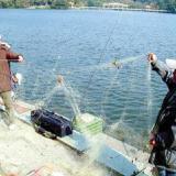 供应保定渔网粘网厂家,保定渔网粘网厂家批发,保定渔网粘网厂家价格