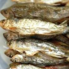 供应洞滨村小鱼干油炸小鱼干福记鱼