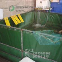 PVC涂塑布-耐磨夹网布 防水涂层布图片