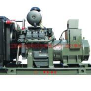 沃尔沃发电机/集装箱型发电机图片