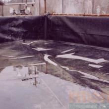 供应泥鳅池专用地膜批发