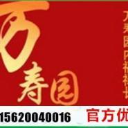 天津公墓网万寿园公墓天津公墓图片