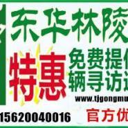东华林公墓网站图片