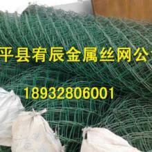 供应PVC塑料丝勾花网