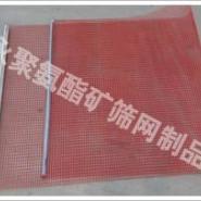 红色聚氨酯托网红色高频筛网耐磨网图片