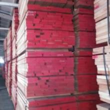 供应德国红榉家具材,欧洲山毛榉,榉木实木板材批发