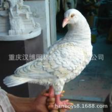 供应装饰品摆设件和平飞鸽子白鸽批发