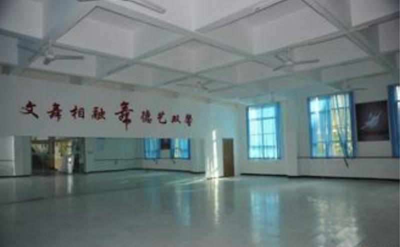 成都专业舞蹈室装修公司图片 成都专业舞蹈室装修公司样板图 成都专高清图片