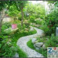绿化养护的服务范围有哪些图片
