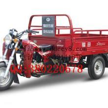 福田五星 150ZH(JQ) 货运三轮摩托车 正三轮摩托车图片