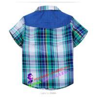 2014春款童衬衫中小新款格子衬衣