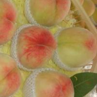 阳山水蜜桃什么时候上市