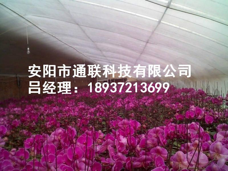 供应天津新型农业温室大棚骨架图片