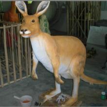 供应袋鼠模型