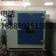 康恒101-3A型鼓风恒温干燥箱图片