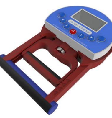 握力测试仪图片/握力测试仪样板图 (1)