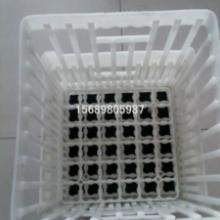 供应鸡蛋周转箱禽蛋运输箱鸡蛋周转筐厂家对称鸡蛋筐批发
