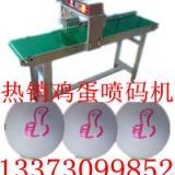 供应辽宁带输送装置的鸡蛋喷码机 鸡蛋打码机