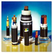 供应耐火耐高温控制电缆的详细介绍  不燃烧电缆厂家电话图片