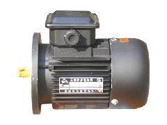 供应YC系列单相电容异步电动机,单相电容异步电动机就找远东微特