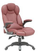 珠海英皇办公椅,珠海办公椅首选珠海英皇家具,本公司集开发,设计,生产批发