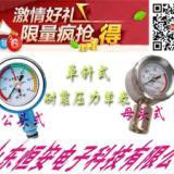 供应单针式耐震测压表