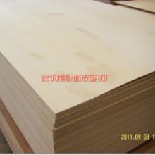 供应杨木三聚氰胺基板,杨木面皮
