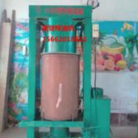 四川合江新型电加热菜籽榨油设备