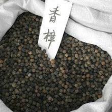 赣州樟树籽_抚州樟树子多少钱一斤_吉安香樟种子多少钱一斤批发
