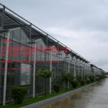 供应PC阳光板温室优质温室大棚建设物美价廉、质量保证、做工美观/18988967562图片