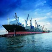 从日本进口做双清的货代公司图片