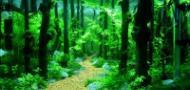 广州及石雨园林水族用品有限公司