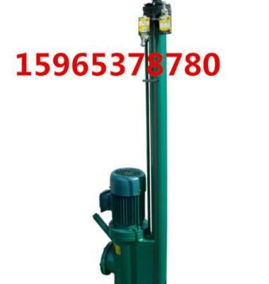 电液推杆图片/电液推杆样板图 (1)