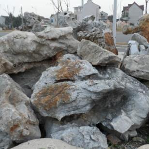 上海川沙假山石太湖石哪里最好图片
