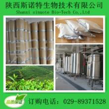 供应常山提取物 纯天然植物提取物 厂家大量现货批发
