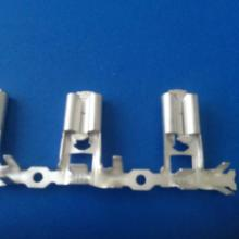 供应6.3旗形带锁  温州插簧端子 护套 连接器 价格批发商 生产商批发